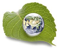 Heilevent für Mutter Erde